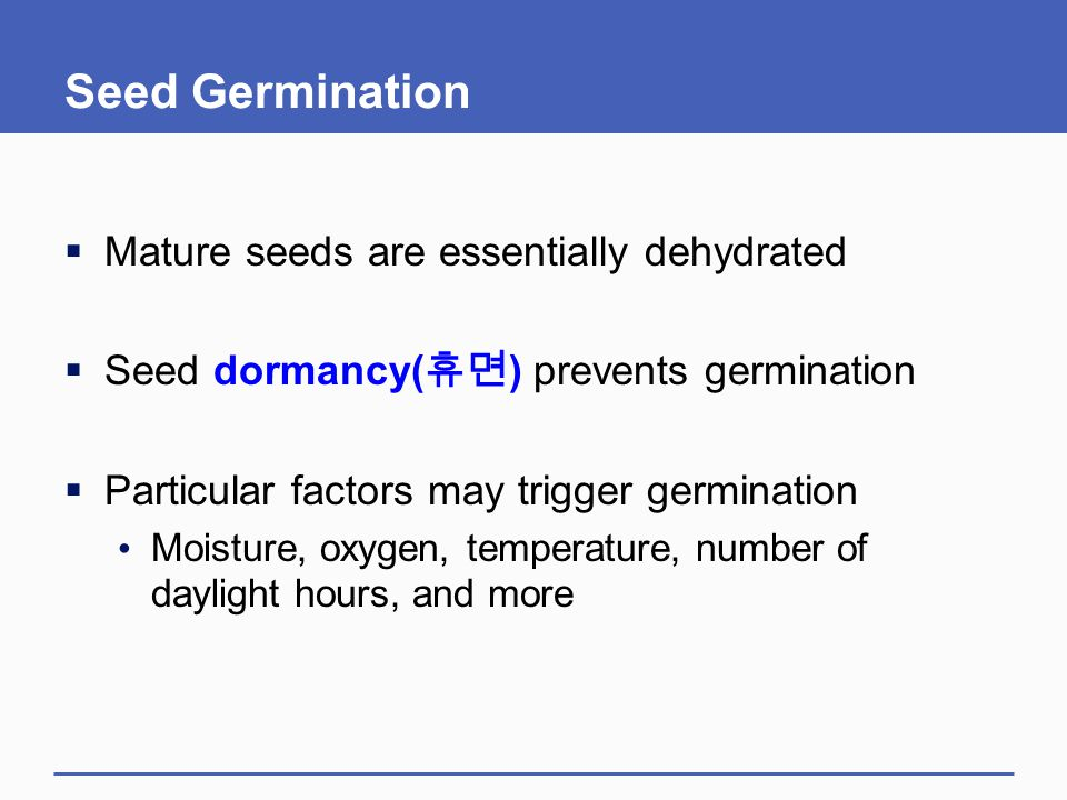 Seed Germination  Mature seeds are essentially dehydrated  Seed dormancy( 휴면 ) prevents germination  Particular factors may trigger germination Moi
