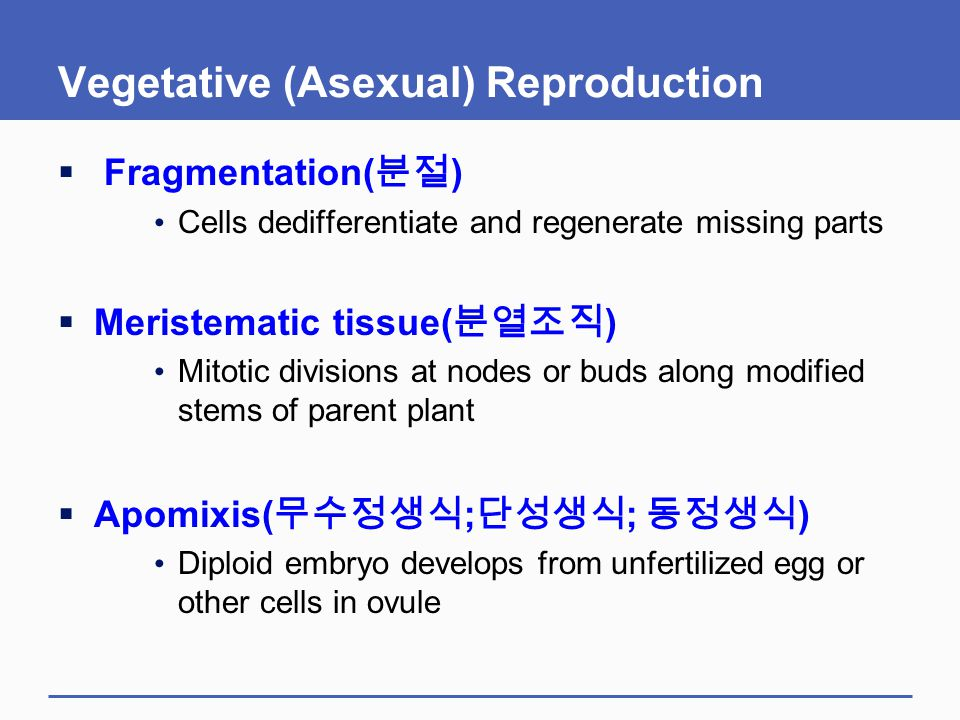 Vegetative (Asexual) Reproduction  Fragmentation( 분절 ) Cells dedifferentiate and regenerate missing parts  Meristematic tissue( 분열조직 ) Mitotic divis