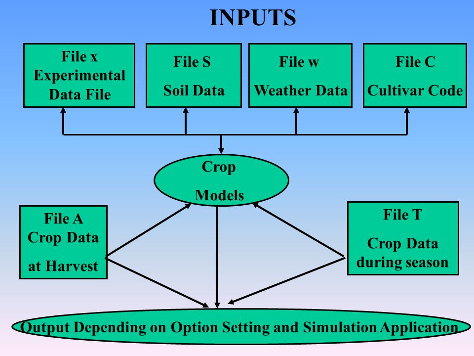 File x Experimental Data File File C Cultivar Code File A Crop Data at Harvest File T Crop Data during season Output Depending on Option Setting and Simulation Application File w Weather Data File S Soil Data Crop Models INPUTS