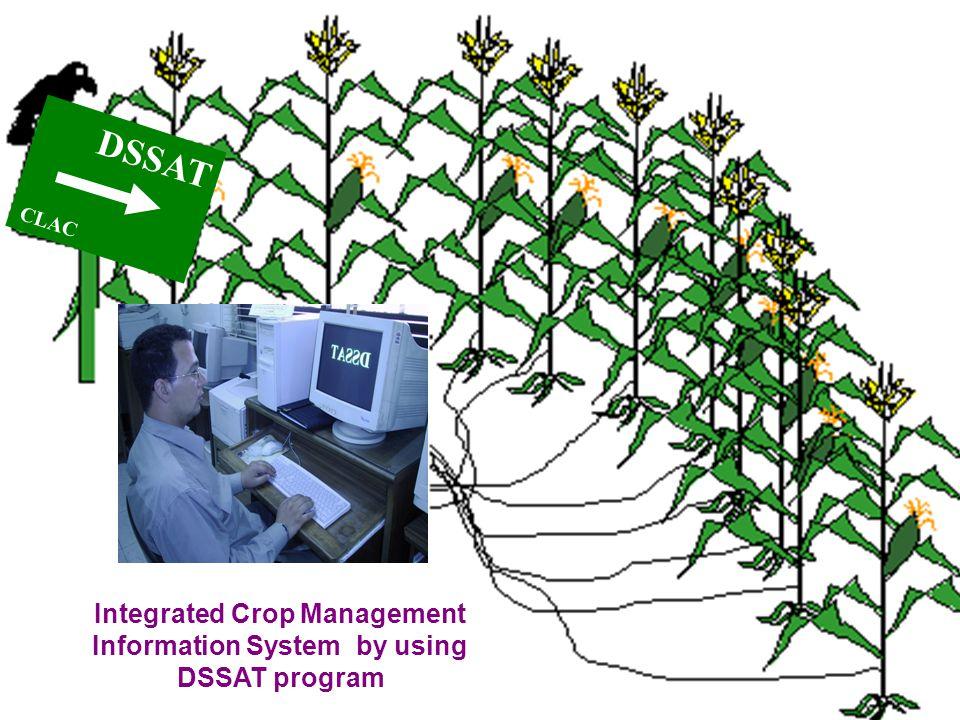 DSSAT CLAC Integrated Crop Management Information System by using DSSAT program