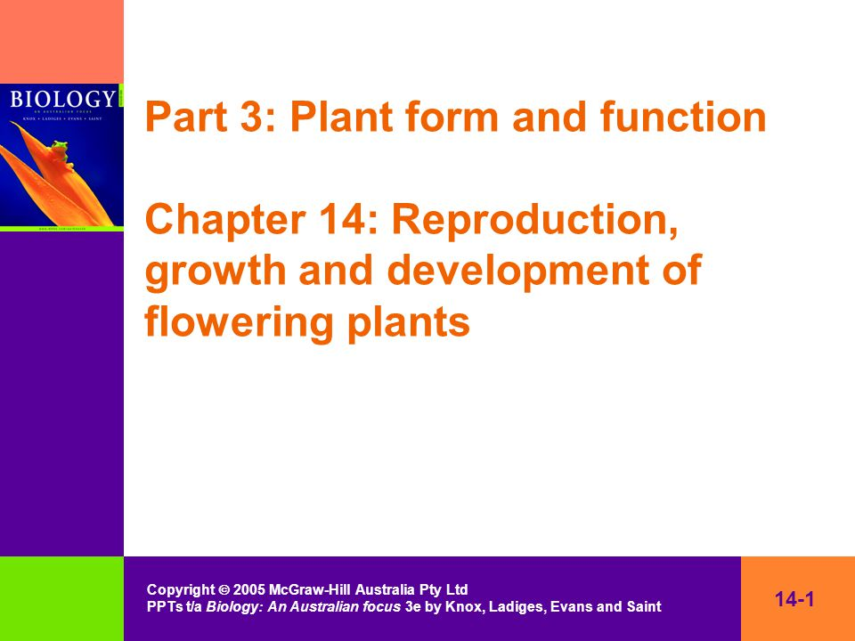 14-1 Copyright  2005 McGraw-Hill Australia Pty Ltd PPTs t/a Biology: An Australian focus 3e by Knox, Ladiges, Evans and Saint Part 3: Plant form and