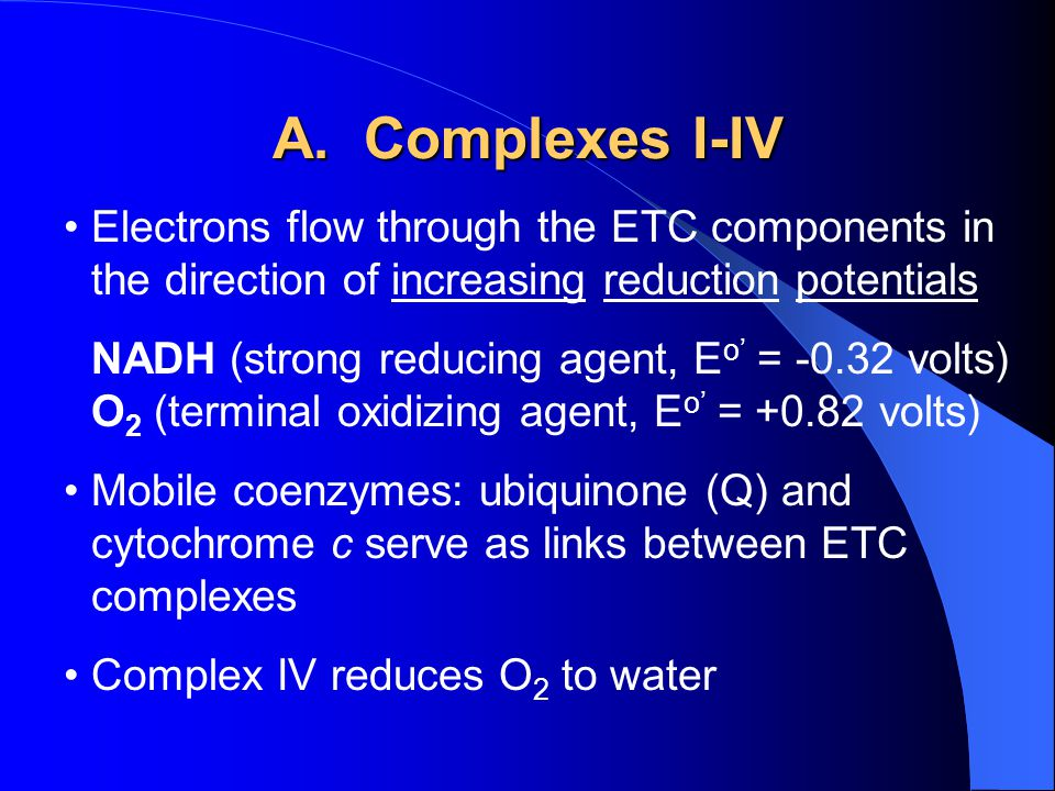 A. Complexes I-IV Electrons flow through the ETC components in the direction of increasing reduction potentials NADH (strong reducing agent, E o' = -0