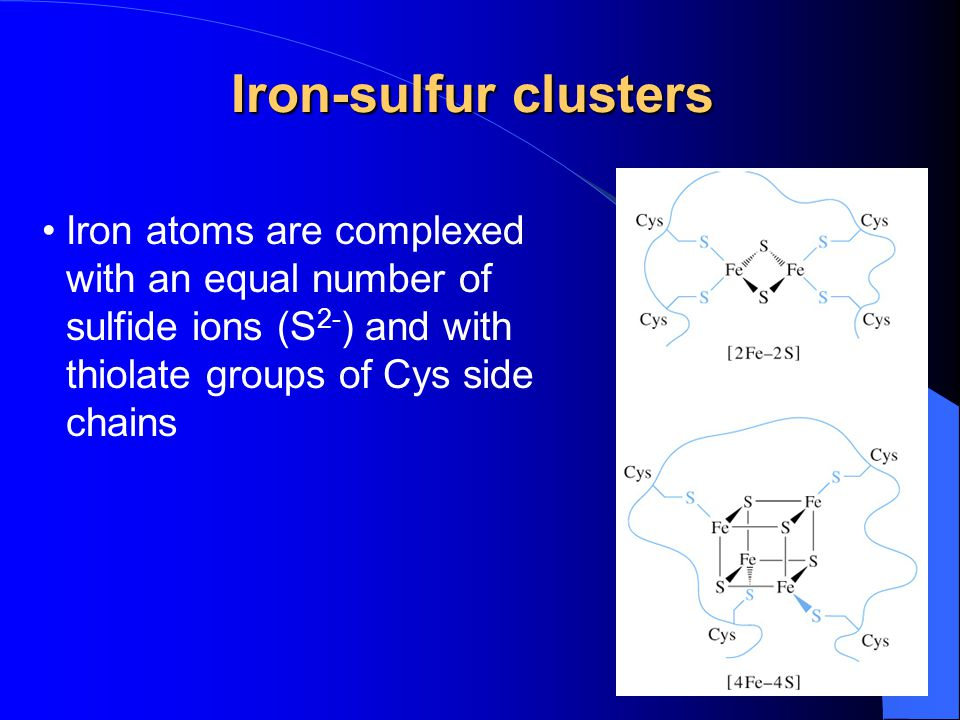Iron-sulfur clusters Iron atoms are complexed with an equal number of sulfide ions (S 2- ) and with thiolate groups of Cys side chains