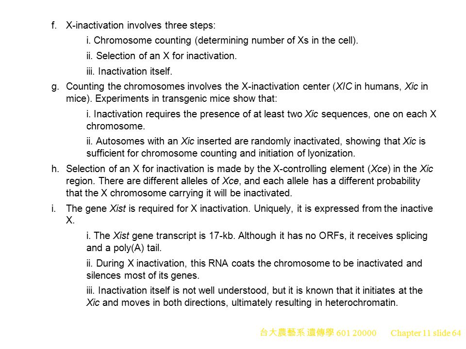 台大農藝系 遺傳學 601 20000 Chapter 11 slide 64 f.X-inactivation involves three steps: i. Chromosome counting (determining number of Xs in the cell). ii. Sele
