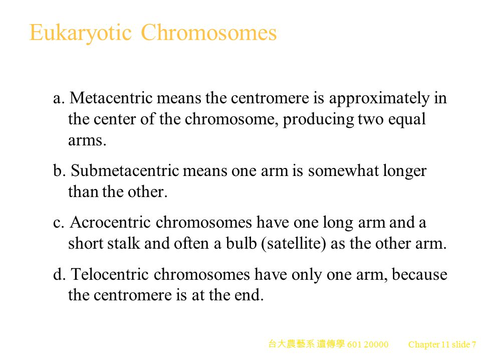 台大農藝系 遺傳學 601 20000 Chapter 11 slide 8 Eukaryotic Chromosomes 5.