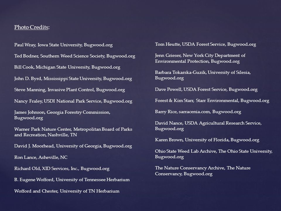 Photo Credits: Paul Wray, Iowa State University, Bugwood.org Ted Bodner, Southern Weed Science Society, Bugwood.org Bill Cook, Michigan State University, Bugwood.org John D.