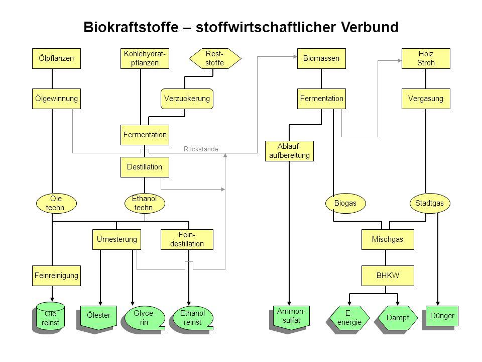 Biokraftstoffe – stoffwirtschaftlicher Verbund Ölpflanzen Ölgewinnung Öle techn.