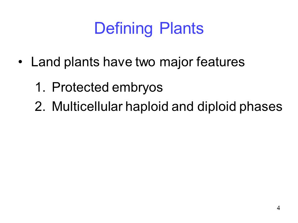 4 Land plants have two major features 1.Protected embryos 2.Multicellular haploid and diploid phases