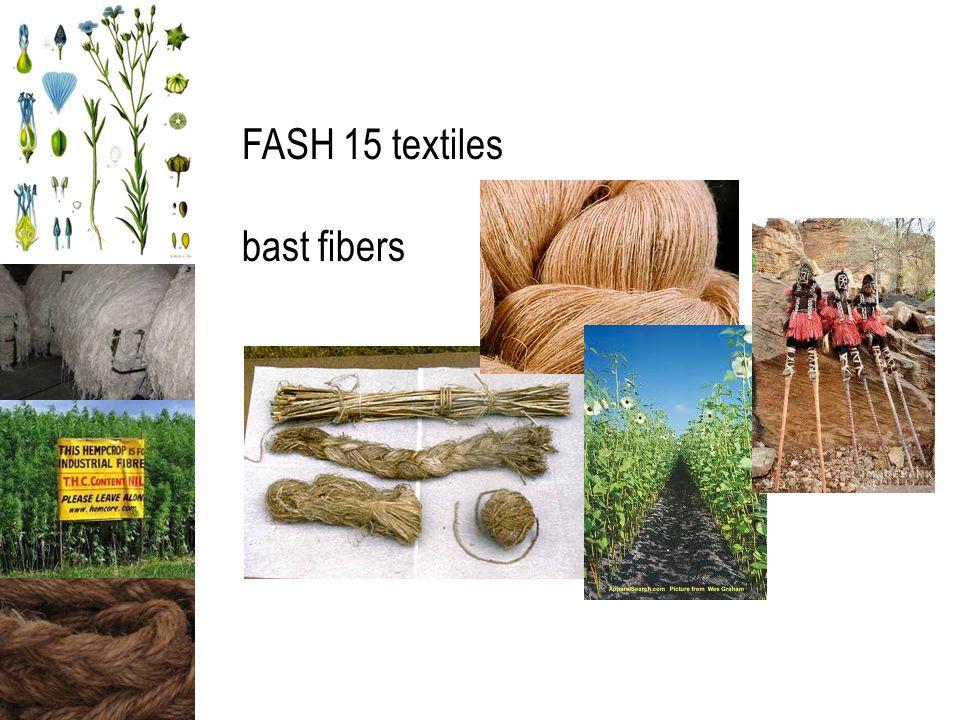 FASH 15 textiles bast fibers