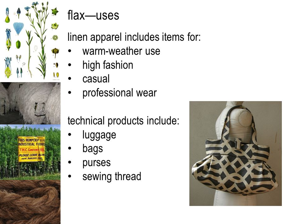flax—uses linen apparel includes items for: warm-weather use high fashion casual professional wear technical products include: luggage bags purses sewing thread