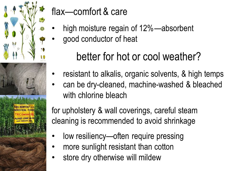 flax—comfort & care high moisture regain of 12%—absorbent good conductor of heat better for hot or cool weather? resistant to alkalis, organic solvent