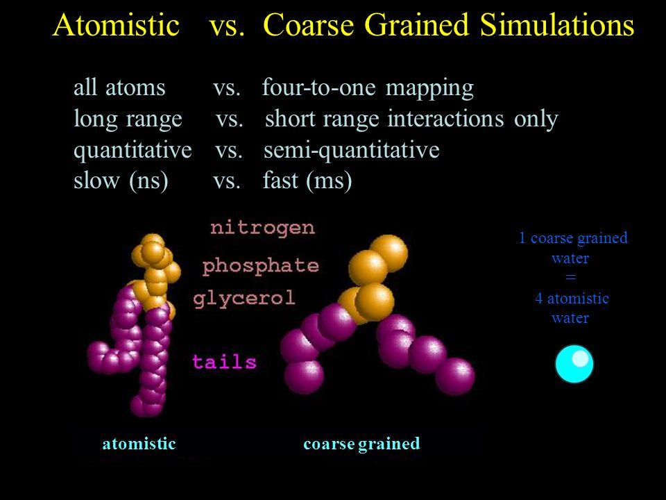 Atomistic vs. Coarse Grained Simulations all atoms vs.