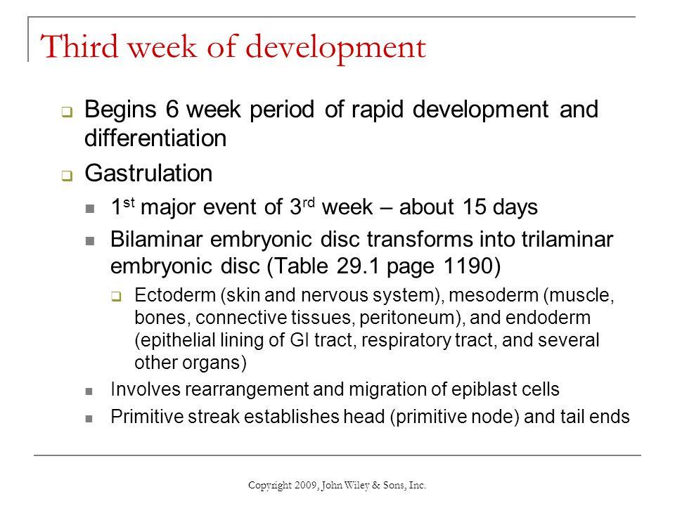 Copyright 2009, John Wiley & Sons, Inc. Third week of development  Begins 6 week period of rapid development and differentiation  Gastrulation 1 st