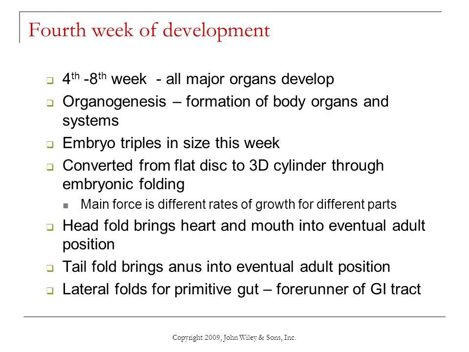 Copyright 2009, John Wiley & Sons, Inc. Fourth week of development  4 th -8 th week - all major organs develop  Organogenesis – formation of body or