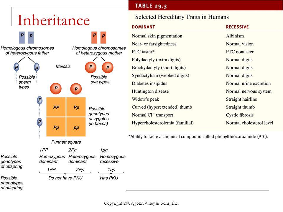 Copyright 2009, John Wiley & Sons, Inc. Inheritance
