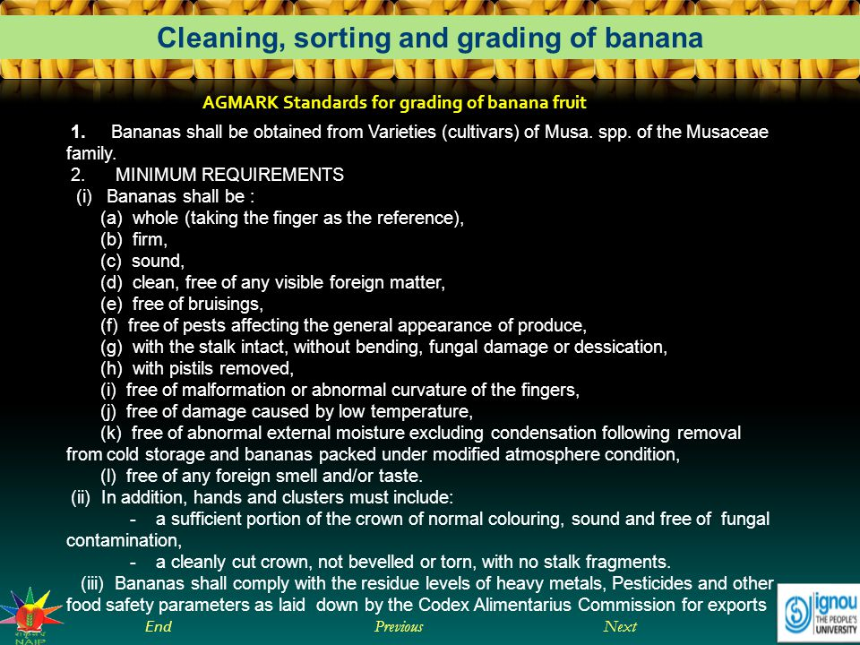 Next End Previous Cleaning, sorting and grading of banana AGMARK Standards for grading of banana fruit 1.