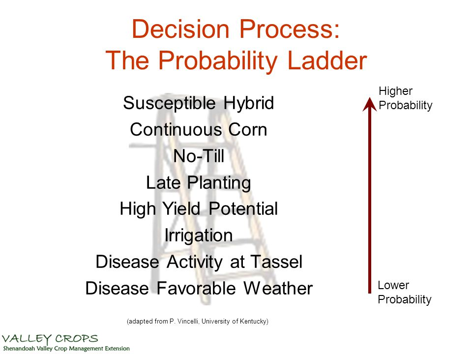 Decision Process: The Probability Ladder Susceptible Hybrid Continuous Corn No-Till Late Planting High Yield Potential Irrigation Disease Activity at Tassel Disease Favorable Weather Lower Probability Higher Probability (adapted from P.