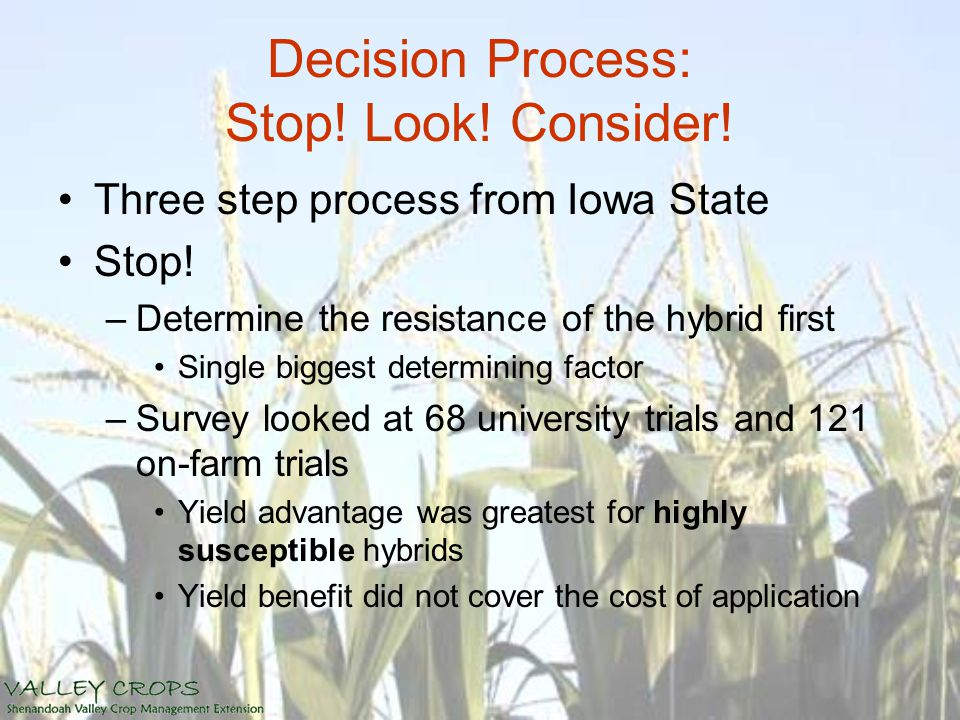 Decision Process: Stop! Look! Consider! Three step process from Iowa State Stop! –Determine the resistance of the hybrid first Single biggest determin