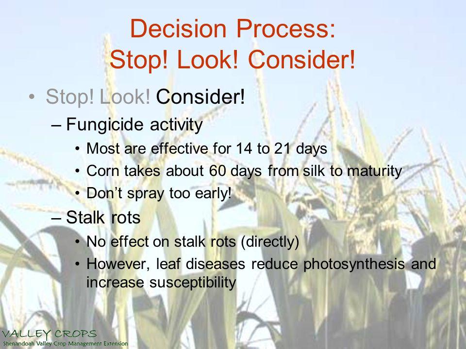 Decision Process: Stop. Look. Consider. Stop. Look.