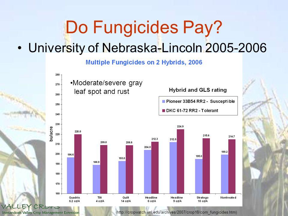 Do Fungicides Pay? University of Nebraska-Lincoln 2005-2006 (http://cropwatch.unl.edu/archives/2007/crop18/corn_fungicides.htm) Moderate/severe gray l