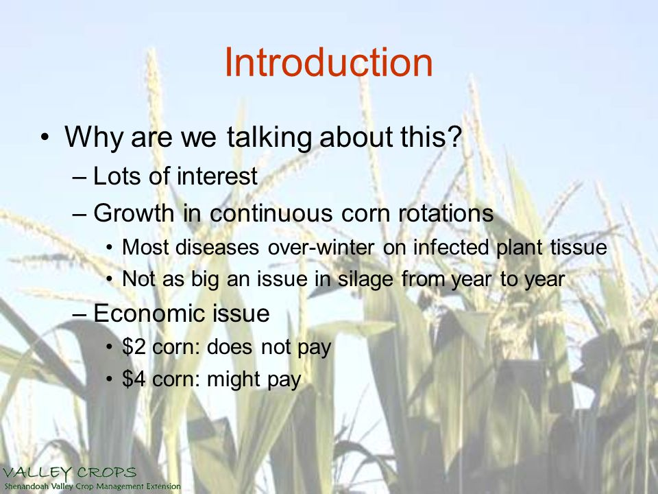 Introduction Why are we talking about this? –Lots of interest –Growth in continuous corn rotations Most diseases over-winter on infected plant tissue