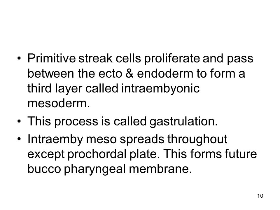10 Primitive streak cells proliferate and pass between the ecto & endoderm to form a third layer called intraembyonic mesoderm.