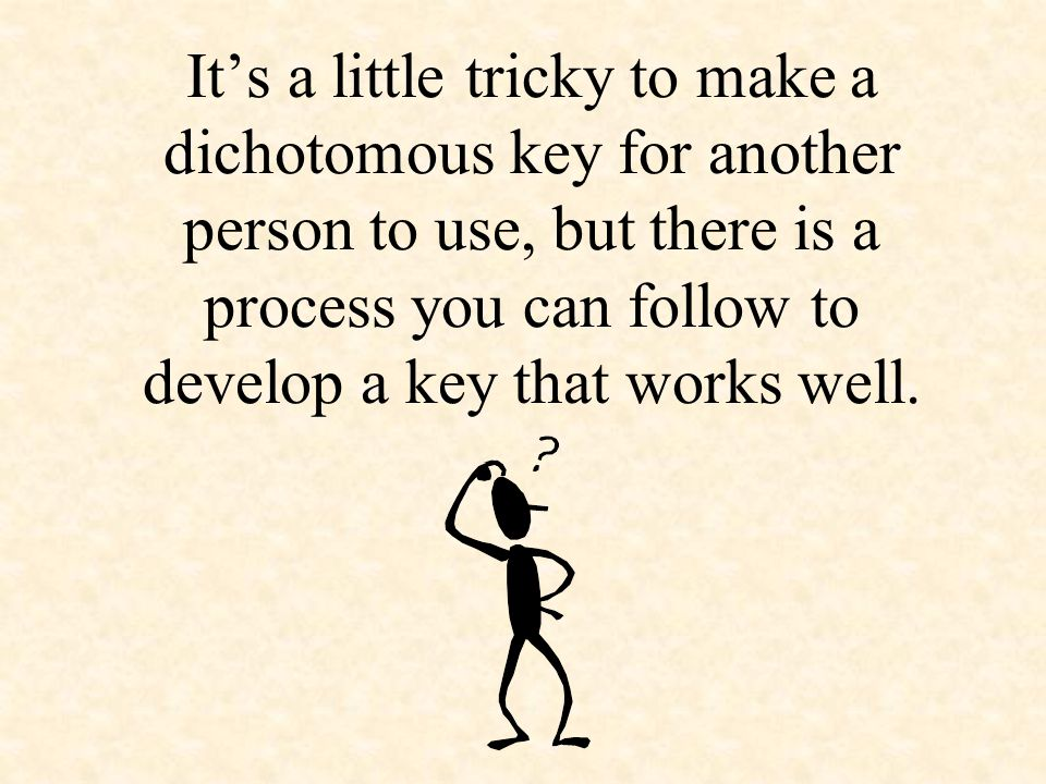 It's a little tricky to make a dichotomous key for another person to use, but there is a process you can follow to develop a key that works well.