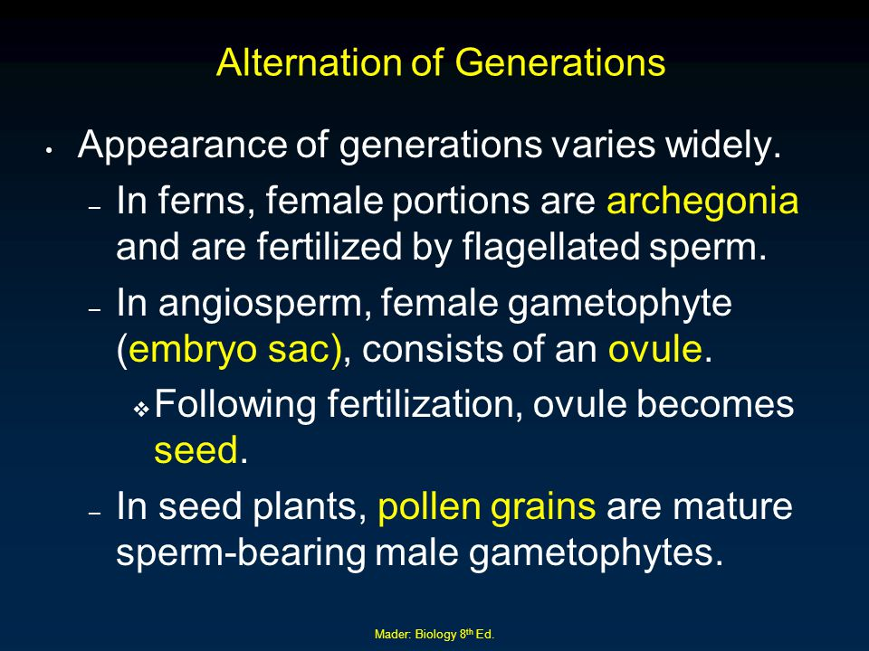 Mader: Biology 8 th Ed. Alternation of Generations Appearance of generations varies widely. – In ferns, female portions are archegonia and are fertili