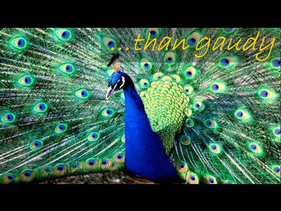 …than gaudy