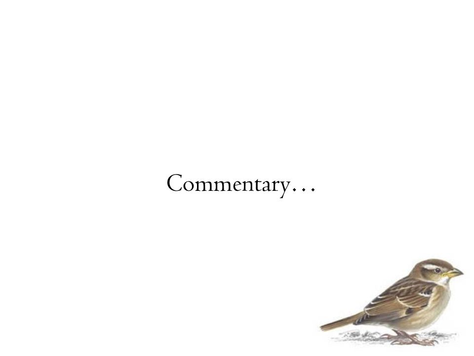 Commentary…