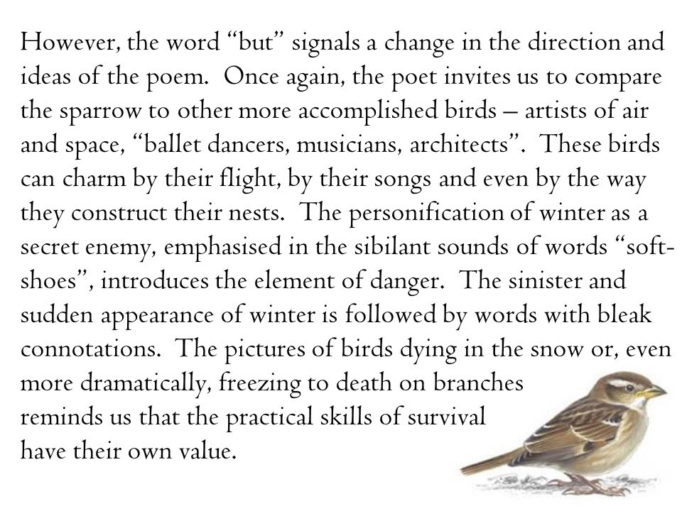 "However, the word ""but"" signals a change in the direction and ideas of the poem. Once again, the poet invites us to compare the sparrow to other more"