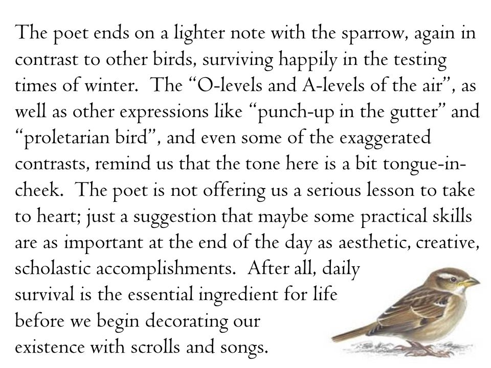 "The poet ends on a lighter note with the sparrow, again in contrast to other birds, surviving happily in the testing times of winter. The ""O-levels an"