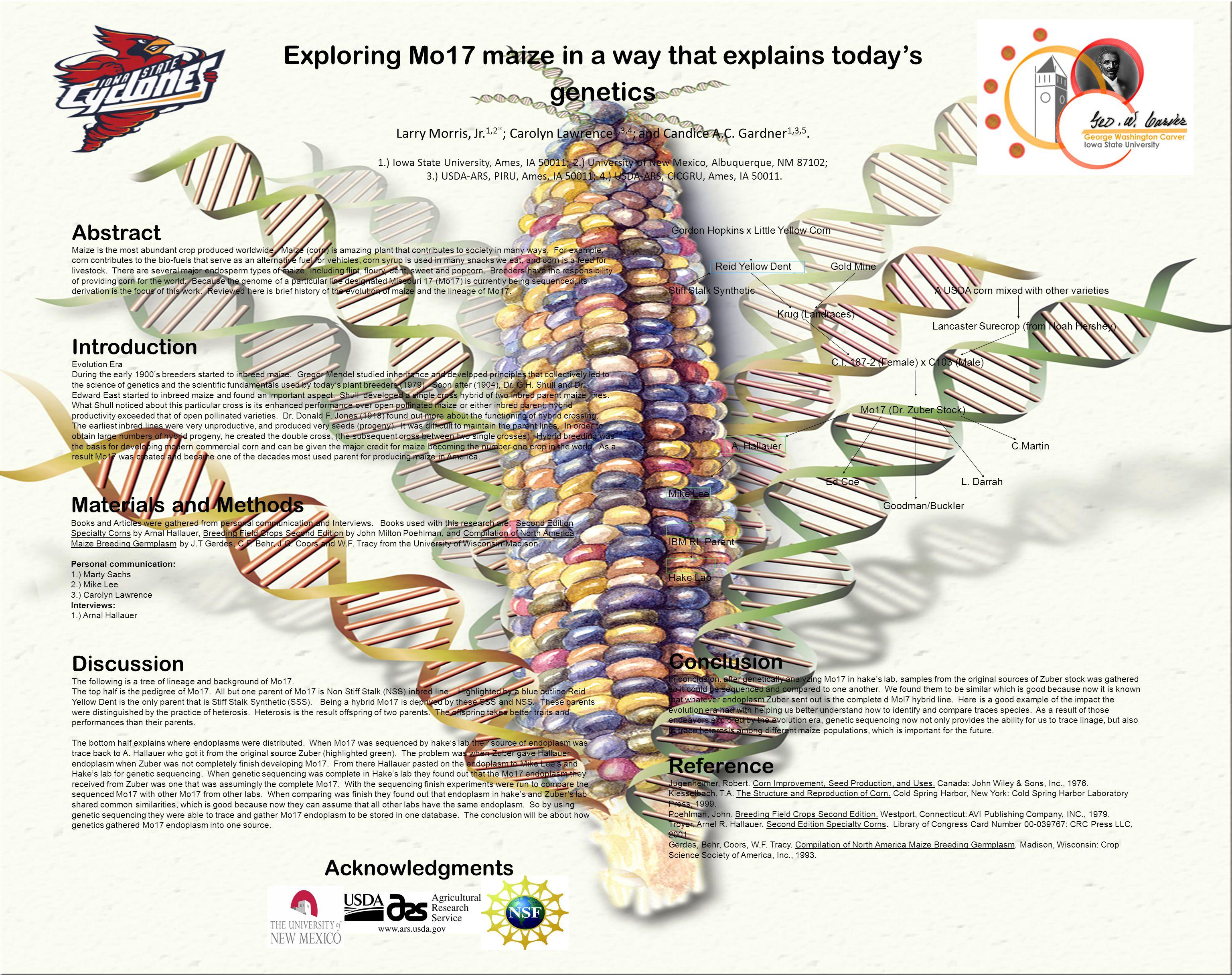 Exploring Mo17 maize in a way that explains today's genetics Larry Morris, Jr.