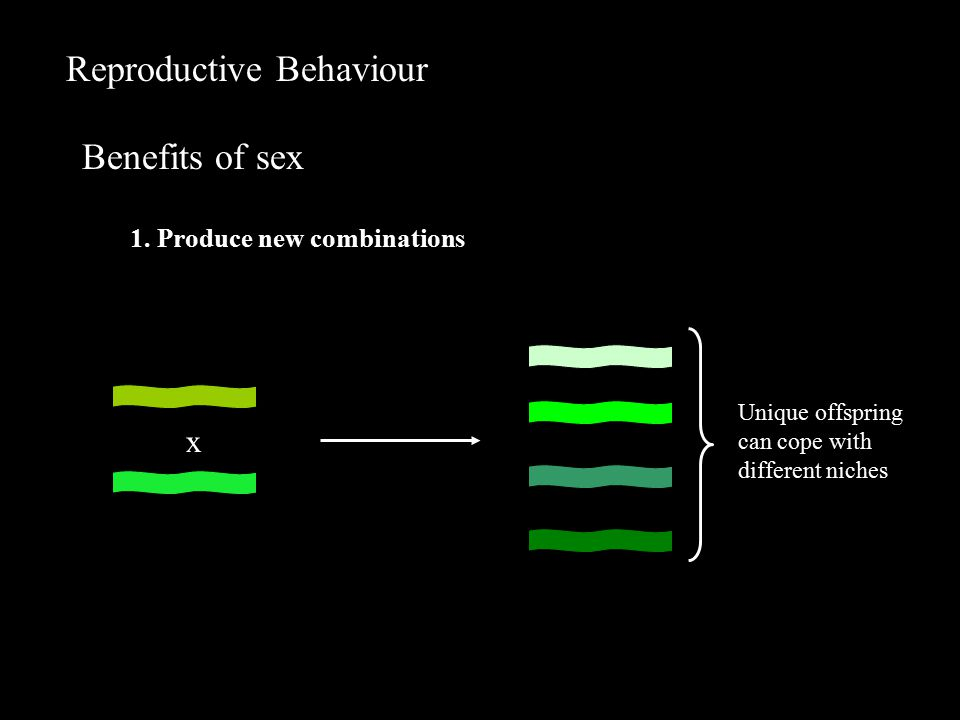 Reproductive Behaviour Benefits of sex 1.