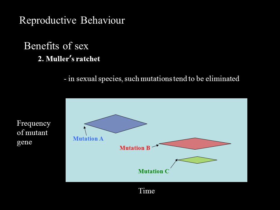 Reproductive Behaviour Benefits of sex 2.