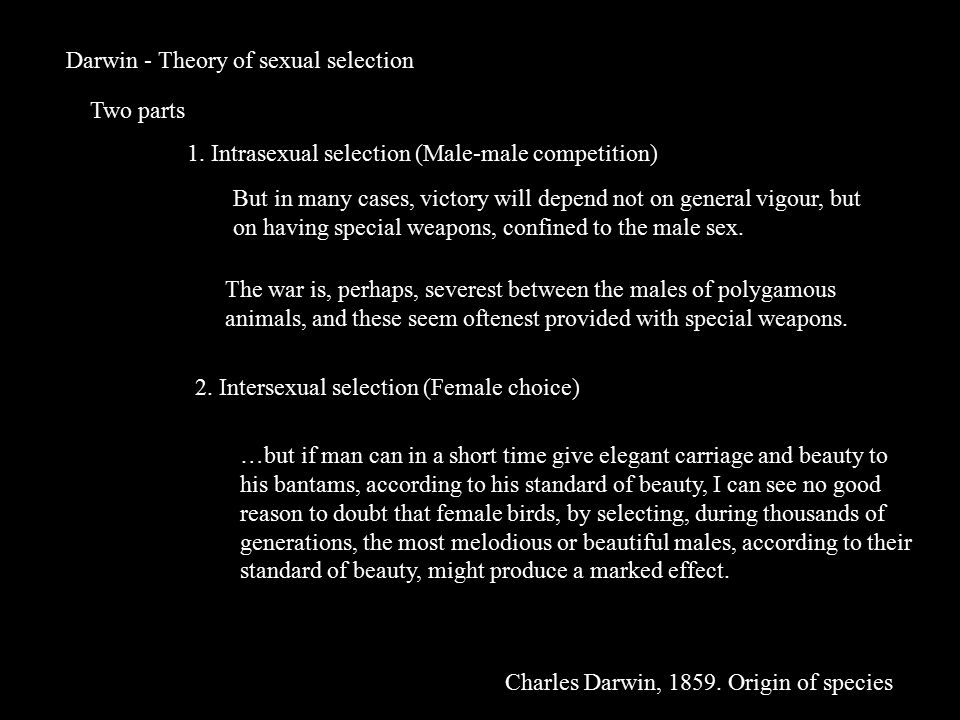 Darwin - Theory of sexual selection Two parts 1. Intrasexual selection (Male-male competition) 2.
