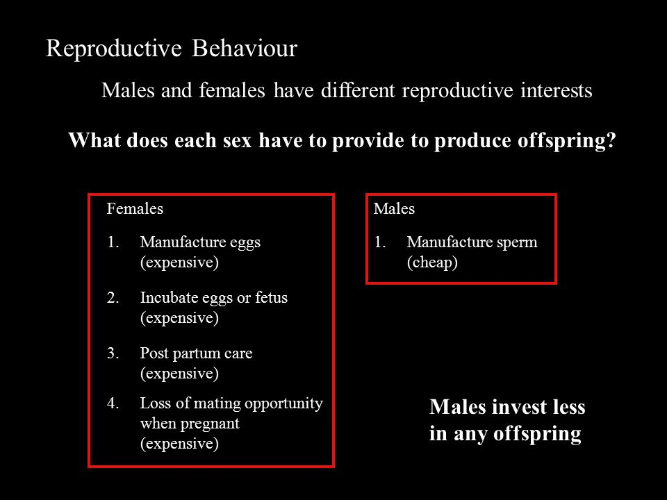 Reproductive Behaviour Males and females have different reproductive interests Females 1.Manufacture eggs (expensive) 2.