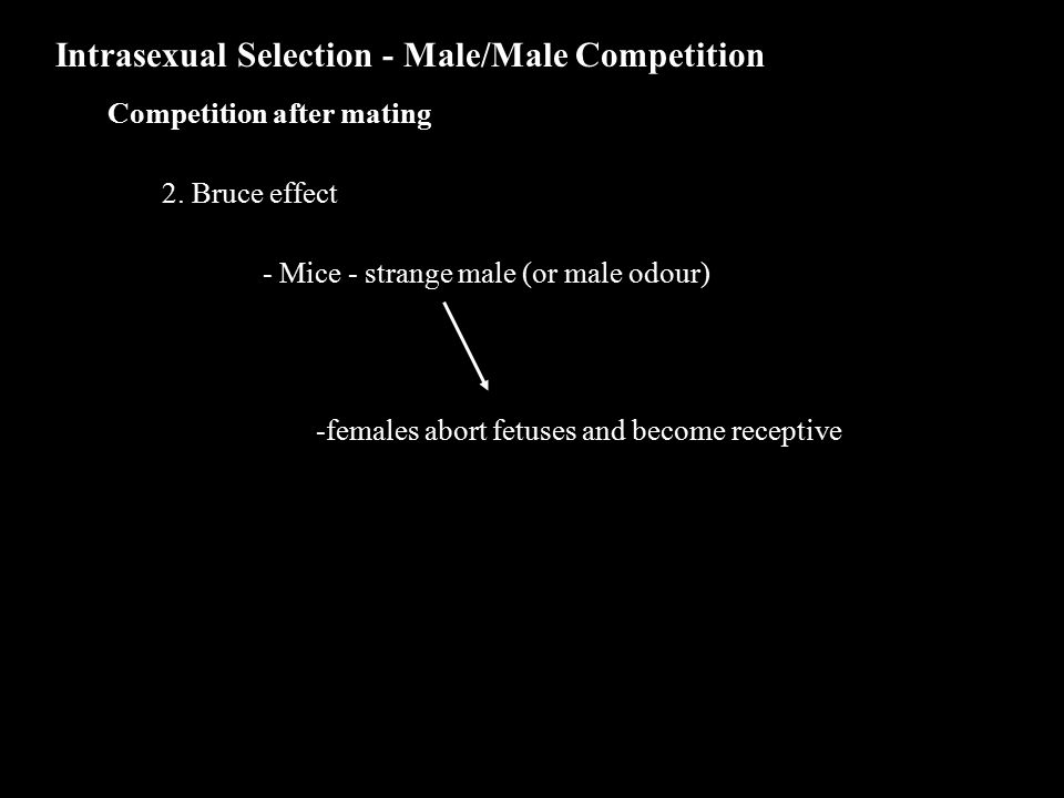 Intrasexual Selection - Male/Male Competition Competition after mating 2.