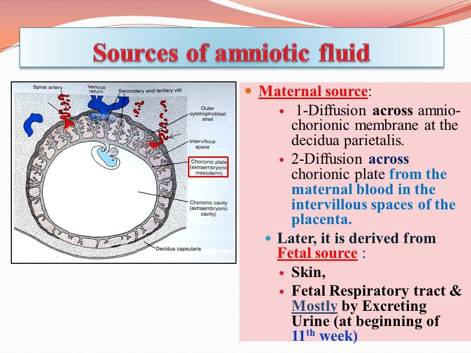 Maternal source: 1-Diffusion across amnio- chorionic membrane at the decidua parietalis.
