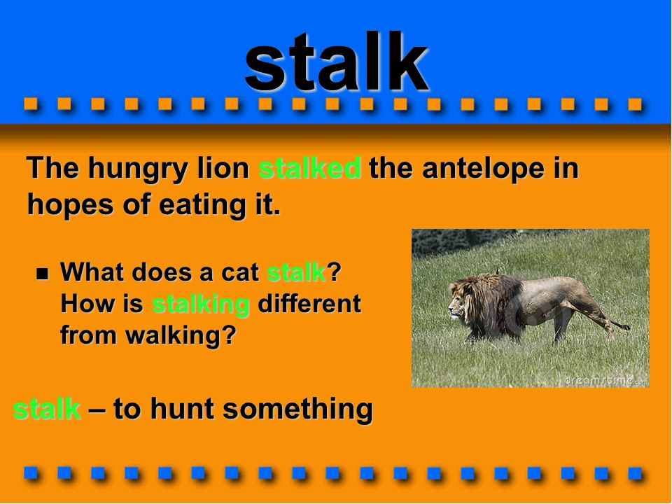 THINK ALOUD – Multisyllabic Word Strategy banner THE SECOND SYLLABLE IS ALSO A CLOSED SYLLABLE.
