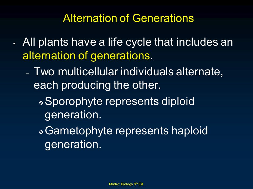 Mader: Biology 8 th Ed. Alternation of Generations All plants have a life cycle that includes an alternation of generations. – Two multicellular indiv
