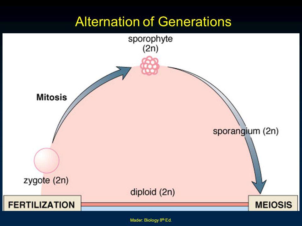 Mader: Biology 8 th Ed. Alternation of Generations