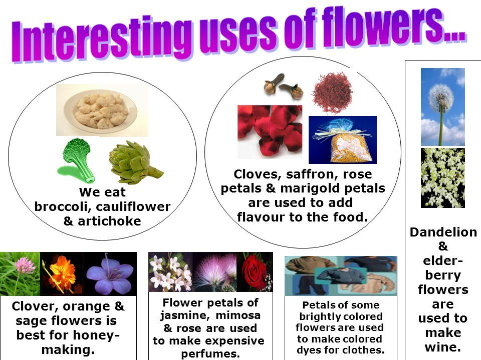 We eat broccoli, cauliflower & artichoke Cloves, saffron, rose petals & marigold petals are used to add flavour to the food. Dandelion & elder- berry