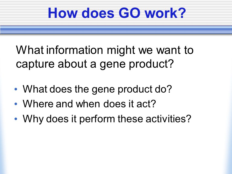 How does GO work? What does the gene product do? Where and when does it act? Why does it perform these activities? What information might we want to c