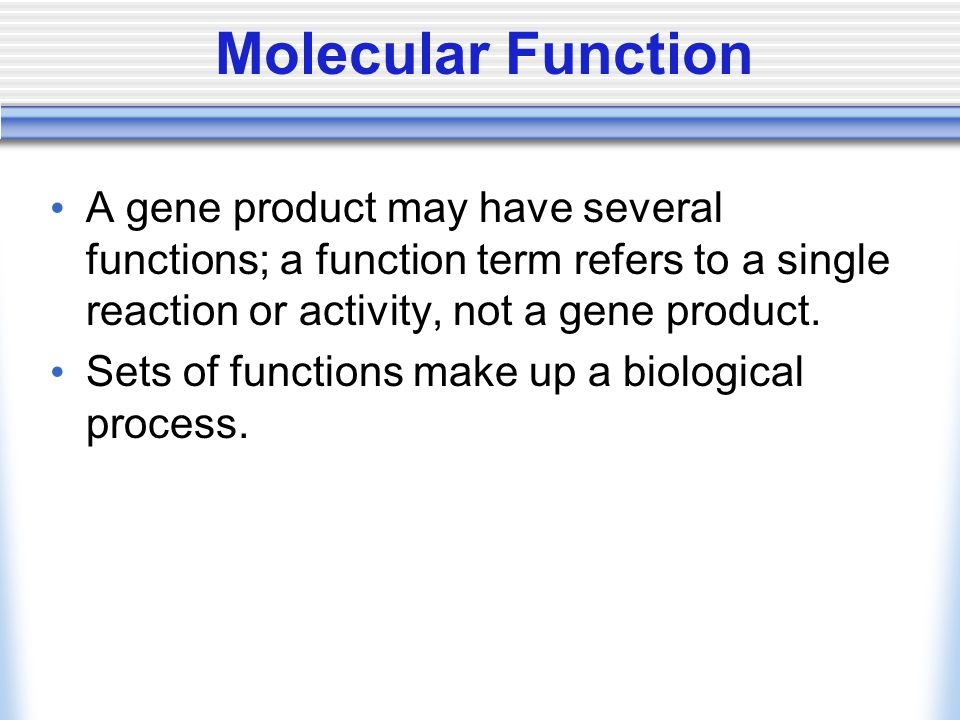 Molecular Function A gene product may have several functions; a function term refers to a single reaction or activity, not a gene product. Sets of fun