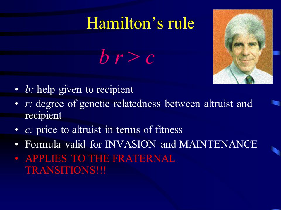 Hamilton's rule b r > c b: help given to recipient r: degree of genetic relatedness between altruist and recipient c: price to altruist in terms of fitness Formula valid for INVASION and MAINTENANCE APPLIES TO THE FRATERNAL TRANSITIONS!!!