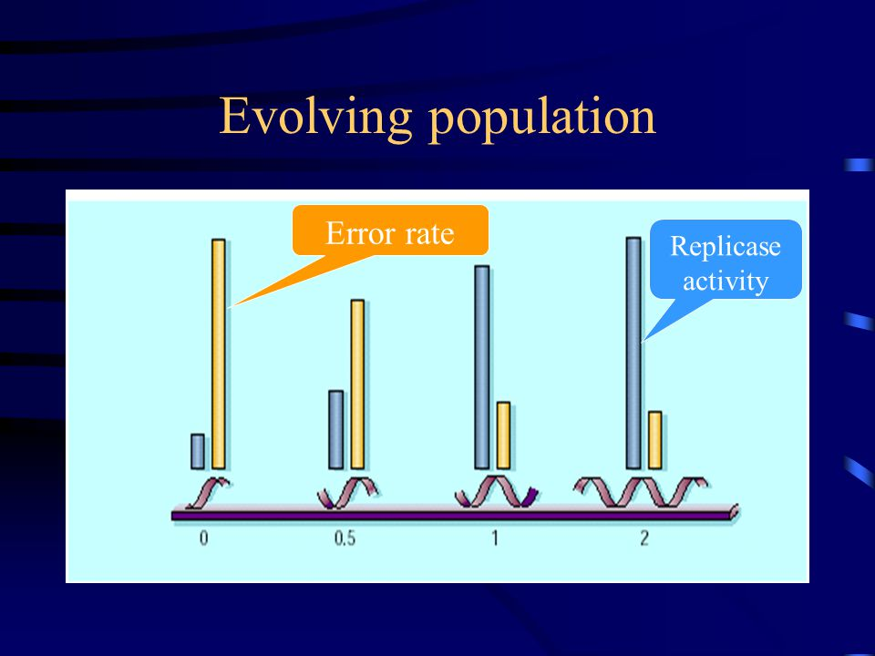 Evolving population Error rate Replicase activity