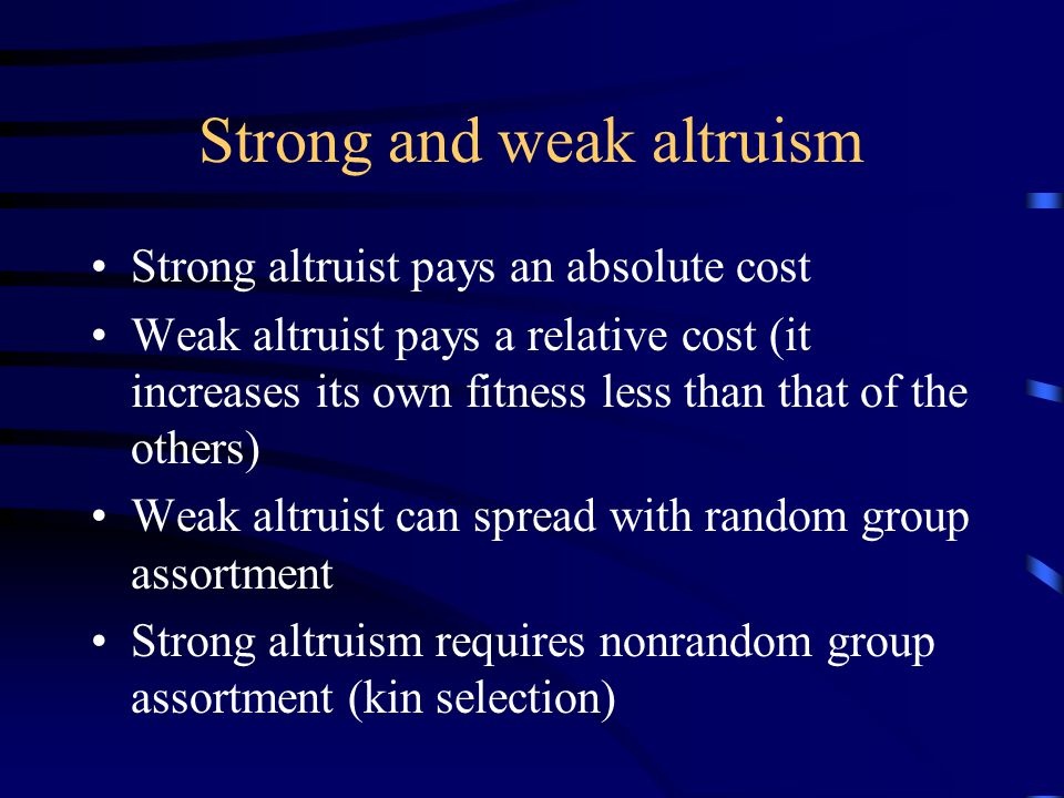 Strong and weak altruism Strong altruist pays an absolute cost Weak altruist pays a relative cost (it increases its own fitness less than that of the others) Weak altruist can spread with random group assortment Strong altruism requires nonrandom group assortment (kin selection)