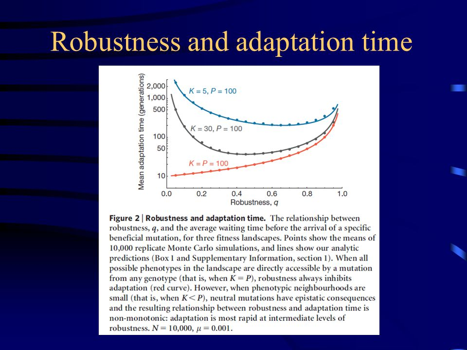 Robustness and adaptation time