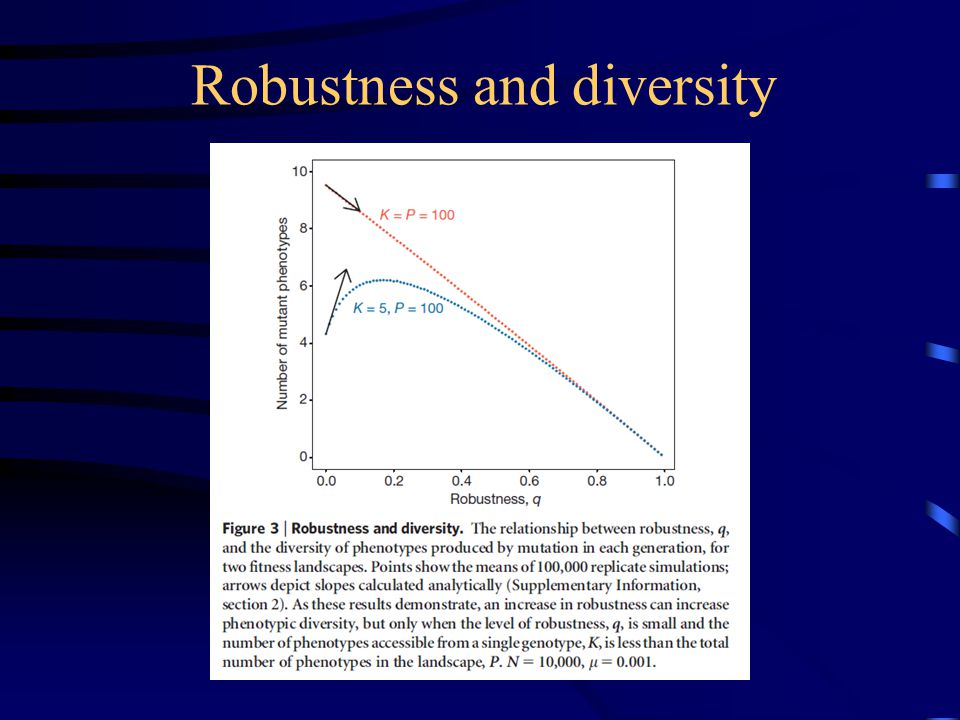 Robustness and diversity
